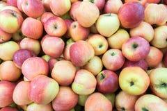 Pommes rouges au marché d'agriculteurs Photographie stock libre de droits