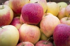 Pommes rouges au marché local Image libre de droits