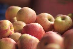 Pommes rouges au sol, pommes fraîches Photo libre de droits