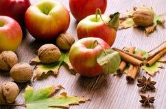 Pommes rouges avec des feuilles, des bâtons de cannelle, des noix et le congé d'automne Photos libres de droits