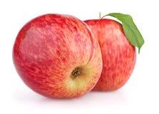 Pommes rouges d'isolement sur le blanc Photographie stock libre de droits