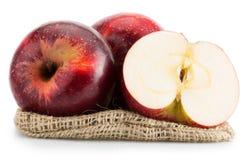 Pommes rouges d'isolement sur le fond blanc Images stock