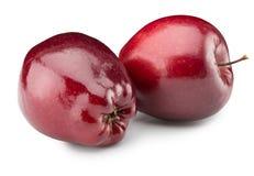 Pommes rouges d'isolement sur le fond blanc Images libres de droits