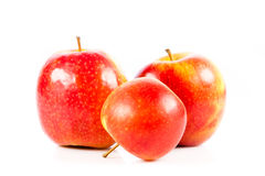 Pommes rouges d'isolement sur le légume blanc de fond et les fruits helthy de nourriture Photo stock