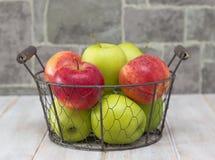 Pommes rouges dans la cuvette Photos libres de droits