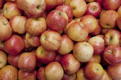 Pommes rouges dans une pile Photos stock