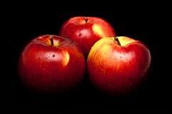 Pommes rouges et humides sur le noir Image stock