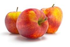Pommes rouges et jaunes Photo libre de droits