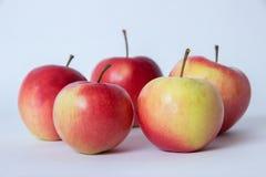 Pommes rouges et jaunes Images stock