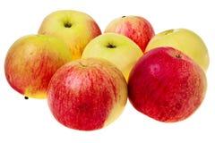 Pommes rouges et vertes fraîches. Image stock