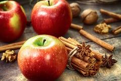 Pommes rouges et vertes fraîches, bâtons de cannelle, cannelle moulue Photographie stock