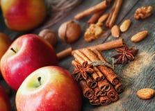 Pommes rouges et vertes fraîches, bâtons de cannelle, cannelle moulue, Photos libres de droits