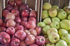 Pommes rouges et vertes pour l'automne Image stock