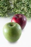 Pommes rouges et vertes sur le blanc Image libre de droits