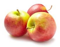 Pommes rouges fraîches Photographie stock