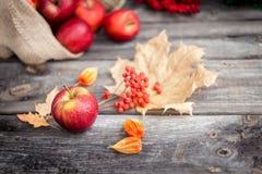 Pommes rouges fraîches sur le fond en bois Image stock