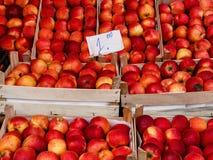 Pommes rouges fraîches sur le marché de fruit Image stock