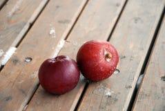 Pommes rouges, gel et neige Photos libres de droits