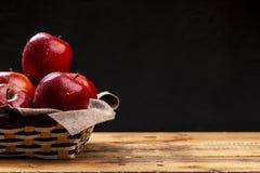 Pommes rouges humides dans la cuvette sur l'obscurité Image libre de droits