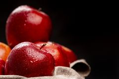 Pommes rouges humides dans la cuvette sur l'obscurité Photo libre de droits