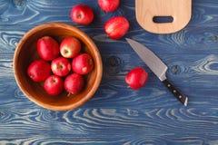 Pommes rouges mûres fraîches dans la cuvette image stock