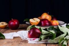 Pommes rouges mûres sur la fin de table  Image stock