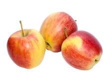 Pommes rouges mûres images libres de droits