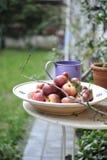Pommes rouges organiques Photos stock