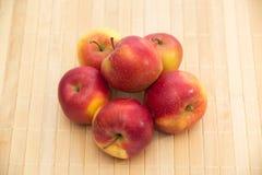 Pommes rouges sur la couleur de soutien d'un arbre images stock