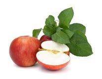 Pommes rouges sur le fond blanc Images libres de droits
