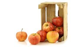 Pommes royales fraîches de gala dans une caisse en bois image stock