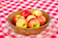 Pommes sélectionnées fraîches Image libre de droits