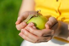 Pommes saines de consommation de votre jardin images stock