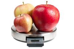 Pommes sur échelles Images stock