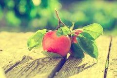 Pommes sur la table en bois au-dessus du fond d'été Images stock