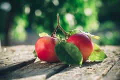 Pommes sur la table en bois au-dessus du fond d'été Photo stock