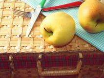 Pommes sur la valise de pique-nique Image stock