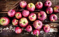Pommes sur le bois Photos stock