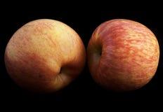 Pommes sur le noir Photos libres de droits