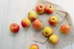 Pommes sur un blanc Photos libres de droits