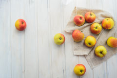 Pommes sur un blanc Images libres de droits