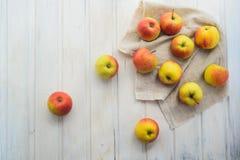 Pommes sur un blanc Image libre de droits