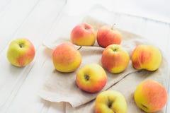 Pommes sur un blanc Photos stock