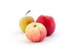 Pommes sur un fond blanc Photographie stock libre de droits