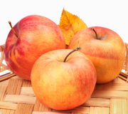 Pommes sur un plateau en osier Image stock