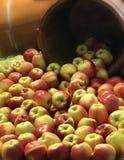 Pommes tombant hors d'un busket image libre de droits