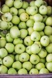 Pommes vertes Image stock