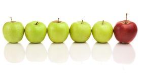 Pommes vertes avec l'amorce rouge Images stock