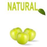Pommes vertes avec l'inscription d'isolement sur le fond blanc photos libres de droits