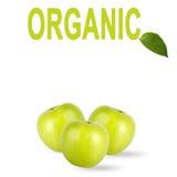 Pommes vertes avec l'inscription d'isolement sur le fond blanc image stock